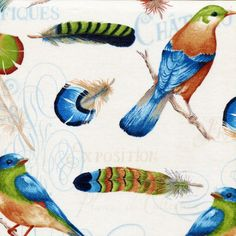 New - Ornithology Birds and Feathers - Wild Apple Fabrics - 1 yard - More Available by BywaterFabric on Etsy