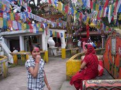 #magiaswiat #darjeeling #podróż #wakacje #zwiedzanie # indie #blog #świątynia #mahakala # Indie, Darjeeling, Blog, Darjeeling Tea, Blogging