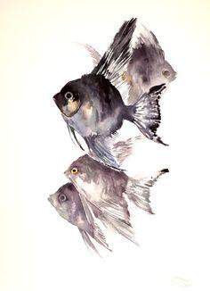 Angelfish, Original watercolor painging, 16 X 12 in, aquarium fish, black on Etsy, $52.00
