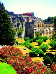 Gardens at Pompeii.... really? i've always want to visit the ruins of pompeii, but this isn't what i thought they were like. mis-captioned?