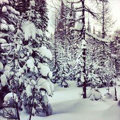 Faaaaawwwwk so beautiful !  #sunshine #sunshinevillage #snow #snowboards #shred #shredding #canadianrockies XO B - @blake_flann- #webstagram