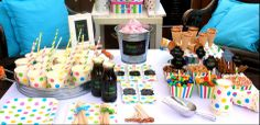 party kits - Beekit studio