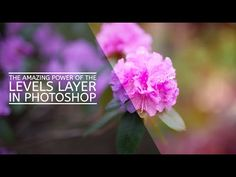 The Amazing Power of The Levels Layer In Photoshop - YouTube