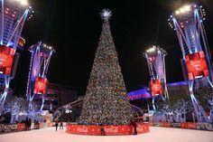 Christmas trees light up around the world