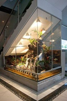 Paludarium under a staircase or under sloping ceilings. The Hoppe-Terrarienbau-Exclusive solves every difficult terrarium construction. Paludarium under a staircase or under sloping ceilings. The Hoppe Terrar .