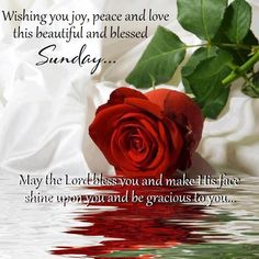 Wishing for a blessed Sunday