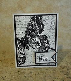 Handmade Swallowtail Butterfly Card Kit Stampin Up Supplies | eBay