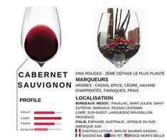 Voici les 15 secondes éducation  les cépages du vin  Aujourdhui le cabernet sauvignon qui fait les grands bordeaux et qui sest exporté dans tous les pays producteurs très beau succès en Italie quelques vins cultes de par le monde.  #vin #wine #wein #vino #vinho#dégustation#winelover #winetasting#frenchwine#instavinho#instadrink#wineblog #sommlife#vigne #vines#vignoble #Paris #France#bio#beaugrandvins  #education #rueilmalmaison #oenologie