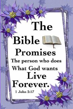 Life In Paradise, 1 John 2, Bible Promises, Jehovah, Father, God, Sayings, Pai, Dios
