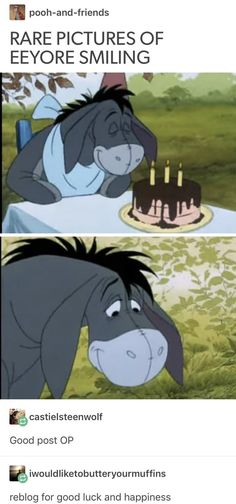 Aw. I love Eeyore. If he can be happy, even a little. There's Hope for all if us too