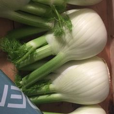 Celery, Vegetables, Food, Vegetable Recipes, Eten, Veggie Food, Meals, Veggies, Diet