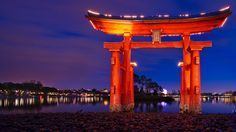 Torii Gate lit up at night on the banks of World Showcase Lagoon