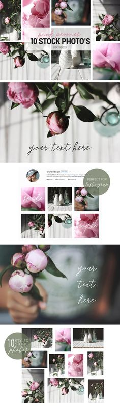 Pink peonies, styled stock photos by Skyla Design. Valentines day, romantic stock images for Instagram and your blog