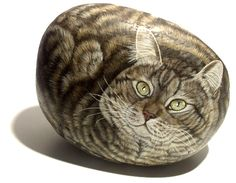 Cat: Painted Rock by Ester Curini Pebble Painting, Love Painting, Hand Painted Rocks, Painted Stones, Art Rupestre, Art Pierre, Pet Rocks, Realistic Drawings, Stone Art