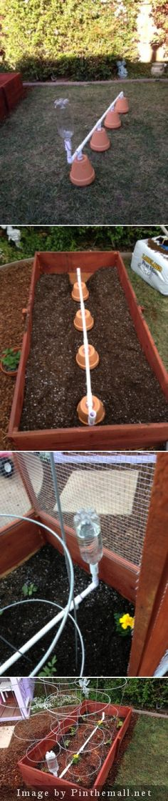 Self watering olla system