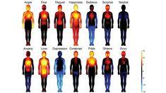 Un 'atlas' emocional localiza los 'epicentros' corporales de la felicidad o de la vergüenza - RT