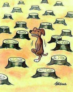 Effects Of Deforestation.. save trees... atleast for their sake ;-)