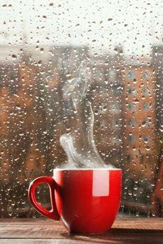 Enjoy the rainy days too! #ZCoiL #AprilShowers #RainyDay
