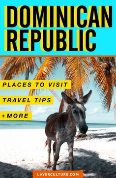 This guide shows you The Best Places to Visit in the Dominican Republic. Here you will find incredible landscapes and beaches in the Caribbean that you MUST visit. Let's take a look! #dominicanrepublic #caribbean #traveldestinations #traveltips #puntacana #backpacking