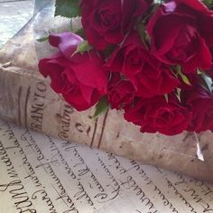 """""""I feel as if I had opened a book and found roses of yesterday sweet and fragrant, between its leaves.""""  L.M. Montgomery (Anne of Green Gables)"""