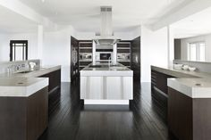 the precise configuration of the commercial-grade kitchen