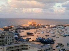 From  Alexandria