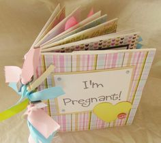 I'M PREGNANT Paper Bag premade ScRapBooK ALbUM -- Expeting a BABY BoY or GiRL