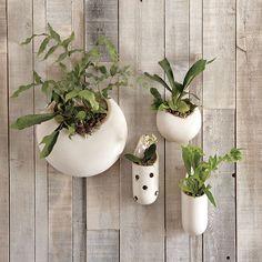 Shane Powers Ceramic Wall Planters | west elm