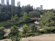 Central Park, one of the last full days I have while I was in New York