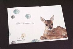Fräulein Gelb Kangaroo, Animals, Yellow, Woman, Baby Bjorn, Animales, Animaux, Animal, Animais