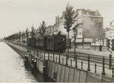 La Haye, The Hague, Netherlands, Dutch, Black And White, City, Fur Wrap, Beautiful, Historical Photos