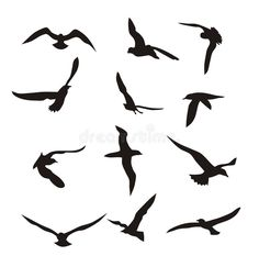 Illustration about Abstract illustration of flying birds. Illustration of outline, birds, isolated - 5147419 Bird Sketch, Flying Birds, Bird Illustration, Abstract, Image, Art, Summary, Art Background, Birds In Flight