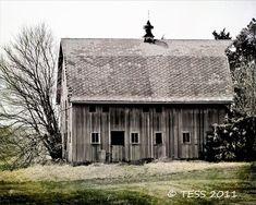 Weathered Old Barn Photo 8 x 12 Photography by PhotographybyTess, $27.00