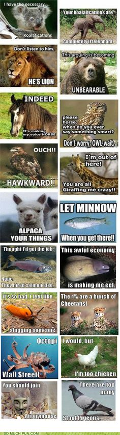 funny puns, you gotta read the whole thing!