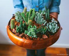 Fáceis de cuidar, os cactos e suculentas são as plantinhas do momento. Aqui nós te ensinamos a fazer um arranjo de mesa com um bowl de cobre.