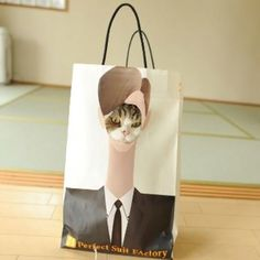 """Me in my """"Purrfect Suit"""""""