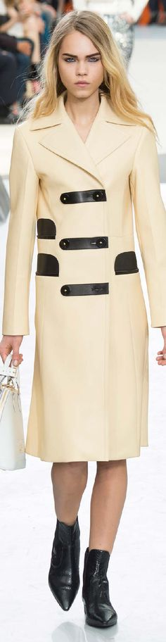 Fall 2015 Ready-to-Wear Louis Vuitton