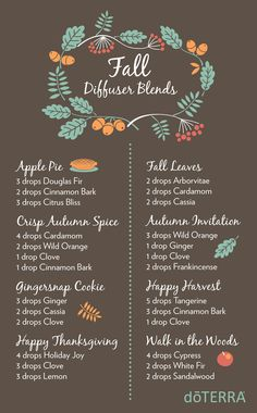 8 Fall Diffuser blends with doTERRA Essential Oils More