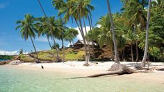 https://flic.kr/s/aHskgDMsfr | •PNG is well known for its beaches, coral reefs and scuba diving