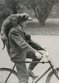 51 Ideas dogs black and white photography vintage photos