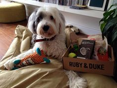 Another satisfied #dog #toy and #treat customer. #Dukebox