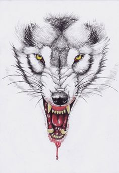 werewolf with rey tapia Native Tattoos, Wolf Tattoos, Arrow Tattoos, Body Art Tattoos, Key Tattoos, Tatoos, Snarling Wolf, Epic Drawings, Pencil Drawings