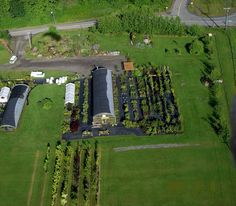 awesome overhead shot of the Greenhouse Nursery