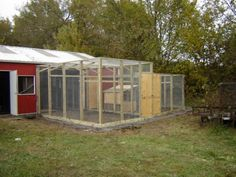 Chicken on pinterest for Chicken enclosure ideas