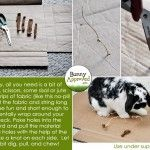 DIY Rabbit Toy Ideas - Bunny Approved - House Rabbit Toys, Snacks, and Accessories Mini Lop Bunnies, Funny Bunnies, Baby Bunnies, Bunny Rabbits, Rabbit Life, House Rabbit, Rabbit Toys, Pet Rabbit, Rabbit Treats