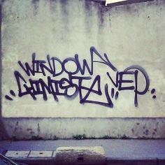 WINDOW / CHIMISTE VEP