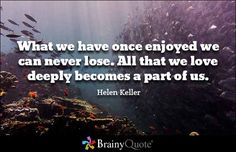 What we have once enjoyed we can never lose. All that we love deeply becomes a part of us. Helen Keller