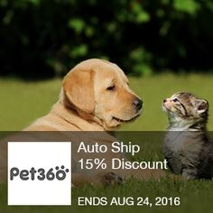Pet 360 Coupon – Auto ship 15% discount  PetFoodDirect.com – Auto Ship 15% Discount. Ends 8/24/2035  Brought to you by http://www.imin.com and http://www.imin.com/store-coupons/pet360/