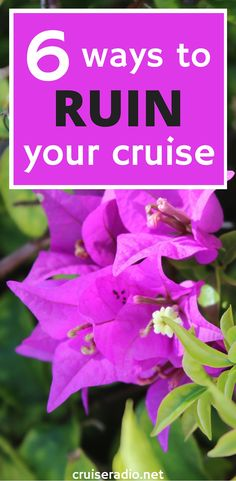 Cruises Cruise Travel And Vacations On Pinterest