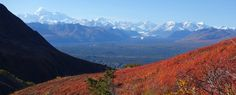 Frank E. Baker of Eagle River captured this Denali View from Kesugi Ridge